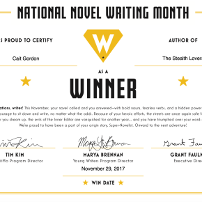 """Winning"" NaNoWriMo as a Spoonie"